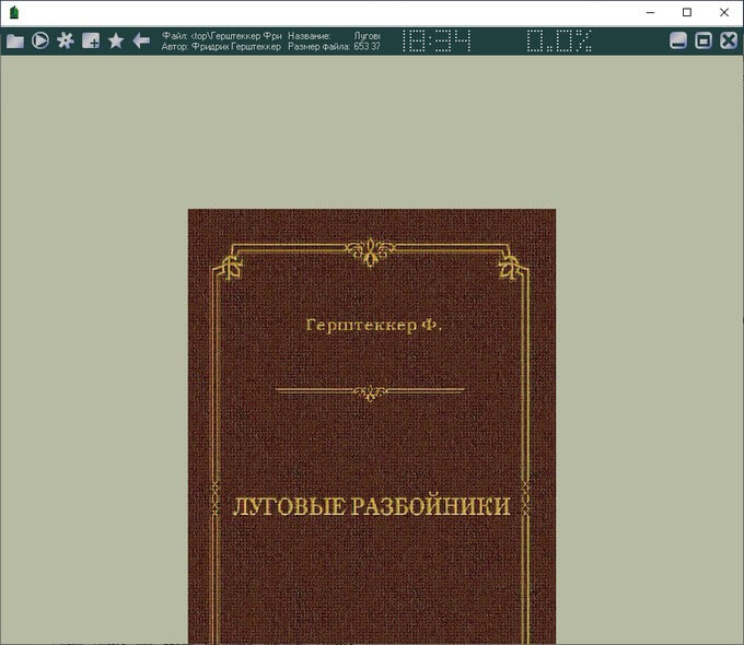 epub в ice book reader pro